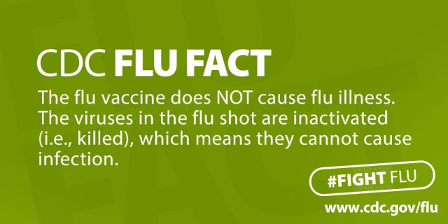CDC_Flu_Facts_Twitter_Green_large
