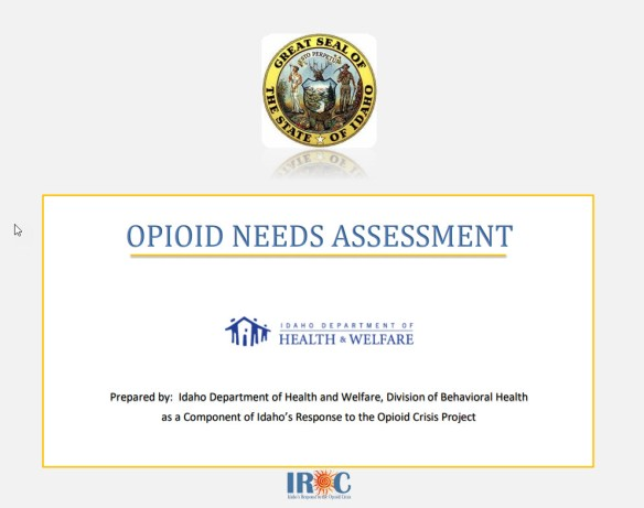 CoverOpioidsNeedsAssessment2018